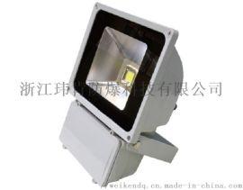 NTC9151 防水防尘LED投光灯