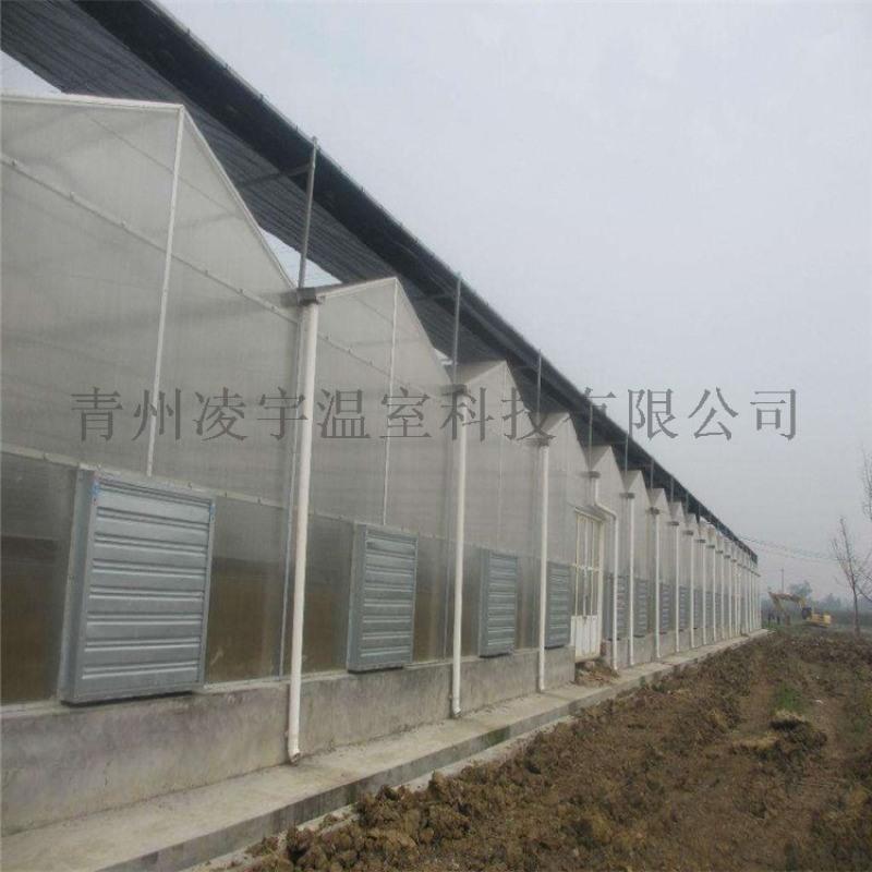 建設溫室大棚陽光板溫室陽光板溫室造價