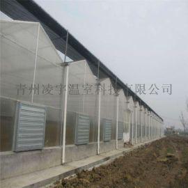 建设温室大棚阳光板温室阳光板温室造价