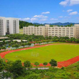 南京学校体育球场人工草坪一体化施工