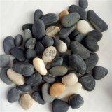 石茂供应水族鱼缸装饰石头 五彩雨花石 黑色雨花石