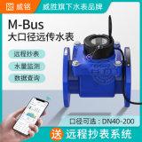 威銘/威勝M-Bus大口徑螺翼式遠傳水錶DN40
