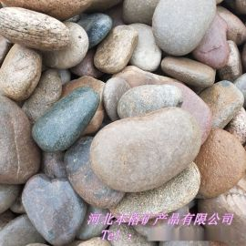 公园填充鹅卵石 水族五色鹅卵石 天然河道鹅卵石