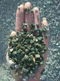 寧夏海藍色石米   永順海藍色豆石促銷