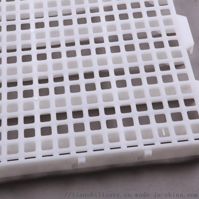 新型鸡用漏粪板 养鸡场塑料漏粪板 鸡舍塑料漏粪板