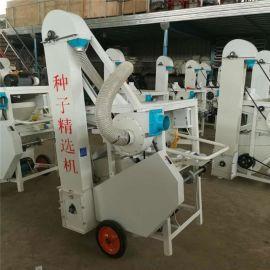 生產五谷雜糧種子篩選機廠家 花生米除塵篩選機價格
