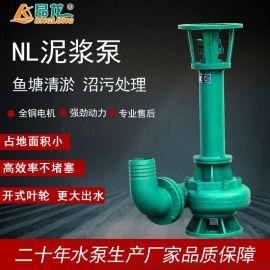 NL系列泥浆泵污水泵化工排污泵 泥浆排污泵
