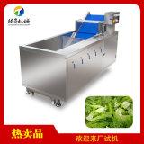 杨梅辣椒清洗机 厨房洗菜机 臭氧杀菌去农残洗菜机