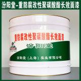 重防腐改性聚碳酸酯长效面漆、生产销售、涂膜坚韧