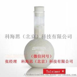 合成樟脑油催化剂树脂T-66 MP