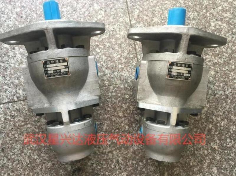 液压齿轮油泵2CB-FA25/18-FL