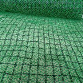 四川三維植被網,成都三維植被網,四川植被網特點