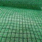 四川三維植被網,成都三維植被網,四川植被**點