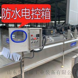 毛桃清洗烘干流水线 水蜜桃脯加工成套设备