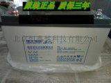 理士蓄电池12V100AH 铅酸免维护