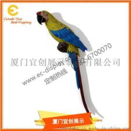 鹦鹉吊挂橱窗鹦鹉展示鹦鹉道具