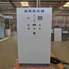 山东臭氧发生器厂家 食品加工污水处理设备