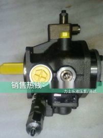 A22VG045HT1005M1/40B-RNB2S73FB2S4A-Y柳工滑移装载机油泵德国