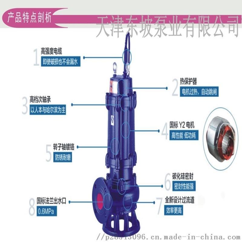 污水泵 大功率雨水排污泵 雨水泵站用泵