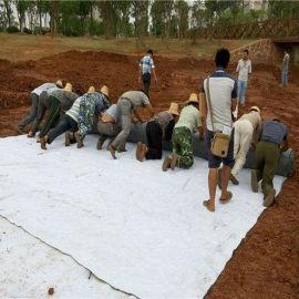 天然钠基膨润土防水毯4800克生产工厂
