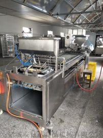 全自动蛋饺机,生产自动蛋饺机,全自动蛋饺流水线