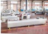 全自動食品真空包裝設備, 食品包裝機械生產廠家