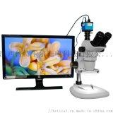 XTL-6745TJ1-700HD型三目體視顯微鏡