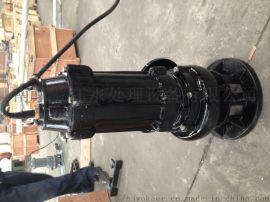 大通道叶轮排污泵 旋涡式叶轮泵WQ150