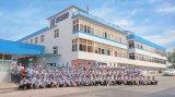 东莞 臭氧老化试验箱 生产厂家HD-E801