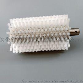 工业机械果蔬清洗尼龙丝毛刷辊 清洗抛光滚刷毛刷辊