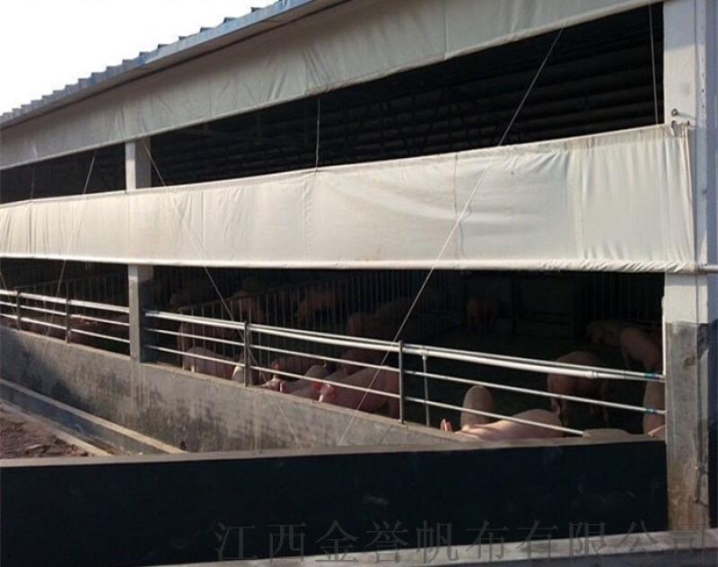 牛场卷帘布 羊场窗帘布