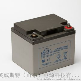 38Ah免维护蓄电池理士蓄电池EPS蓄电池18Ah