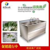 TS-B雙缸果蔬清洗機