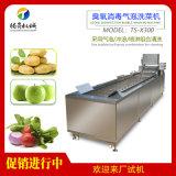 蔬菜水果清洗机,果蔬气泡清洗机厂家