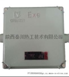 FQMD型脉冲电子点火器