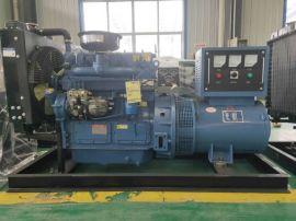 山区应急发电可用30kw柴油发电机组