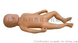 **足月胎儿模型,新生儿模型