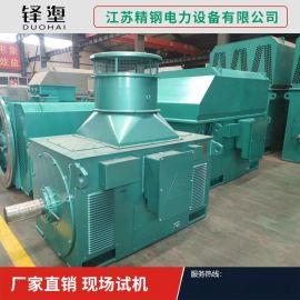 江苏厂家直销YVPKK系列高压三相异步电动机