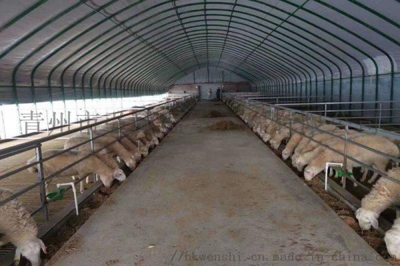 弘康溫室 畜牧水產養殖溫室 紋絡型溫室