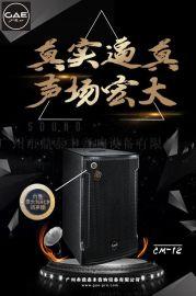 GAEpro【CM-12】全频娱乐音箱 RCF单元