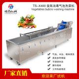 臭氧清洗机气泡洗果机洗菜机TS-X400