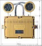 供应BXW8229节能长寿防爆应急工作灯