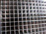 供應電焊網片/衡水建築網片供應/建築抹牆網