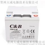 12v38ah免維護蓄電池 UPS太陽能路燈蓄電池