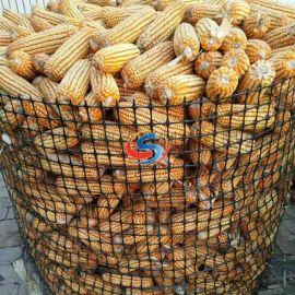 塑料养殖网厂家 粮食储藏塑料网 圈苞米网