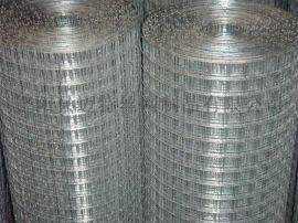 现货建筑电焊网 PVC/PE电焊网 养殖方孔网 浸塑铁丝围网 镀锌电焊网 不锈钢电焊网