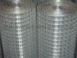 現貨建築電焊網 PVC/PE電焊網 養殖方孔網 浸塑鐵絲圍網 鍍鋅電焊網 不鏽鋼電焊網