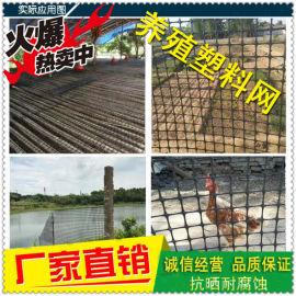 塑料养殖网 围栏网 土工格栅 抗晒耐腐蚀
