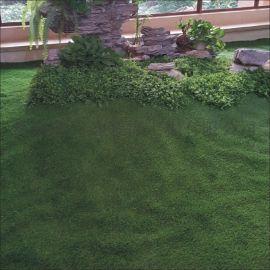 陵水校园人造草坪,海南各地供应地坪,海南宏利达