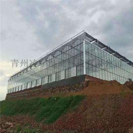 连栋玻璃温室 温室骨架 温室定制